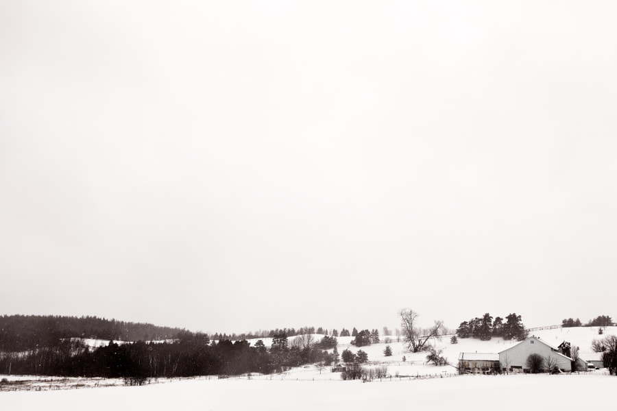 Winter Storm in the Country 2013 #3