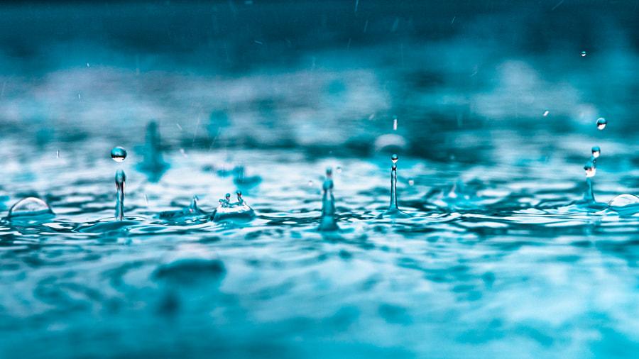 Raindrops by Asgartt Pix (Frank Föhles) on 500px.com