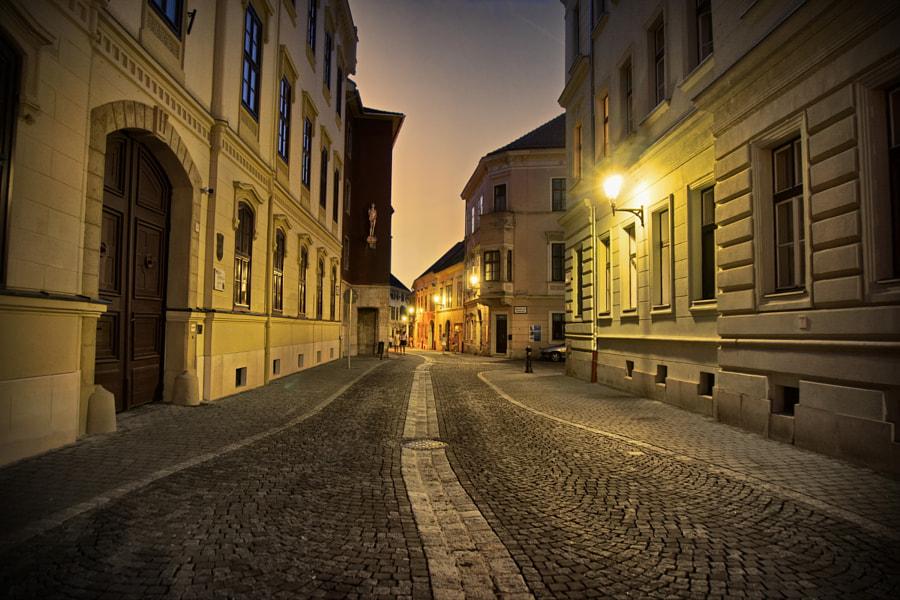Ödenburg by Alois Pankraz on 500px.com