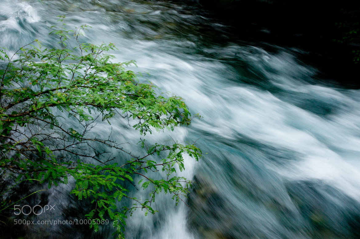 Photograph a stream by Xianyi Shen on 500px