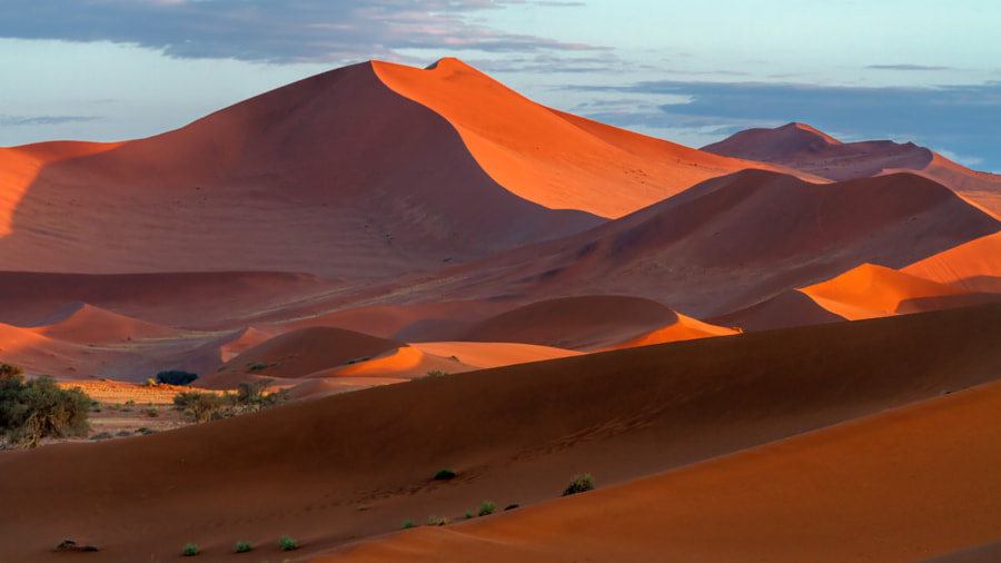 First light in Sossusvlei by Michael Voss on 500px.com