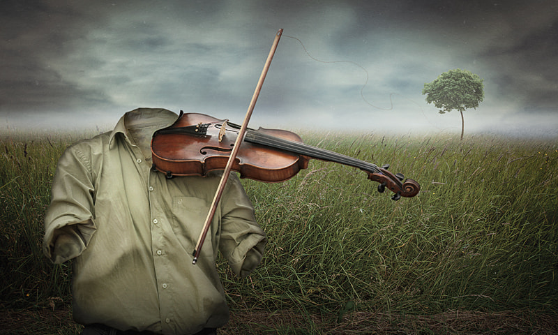 Photograph nature's music by coleopter ! on 500px