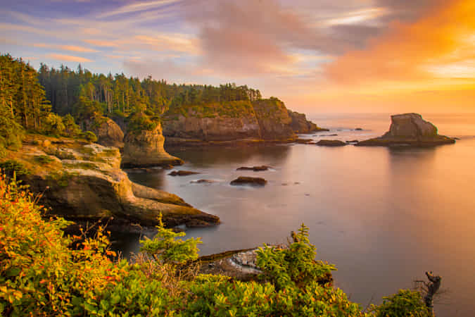 Cape Flattery in Sunset by John S