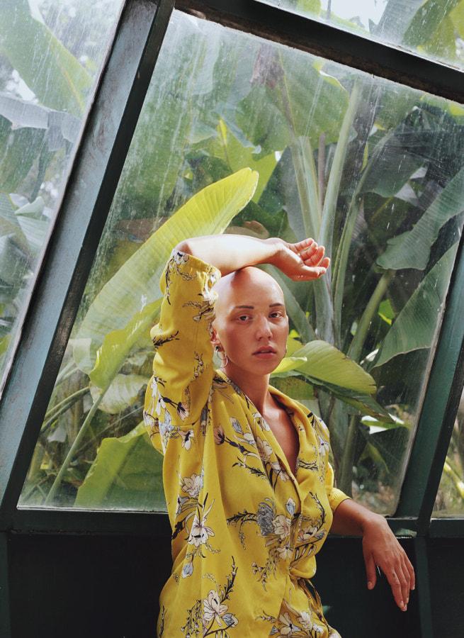 Green Garden by Kate Filipovi? on 500px.com
