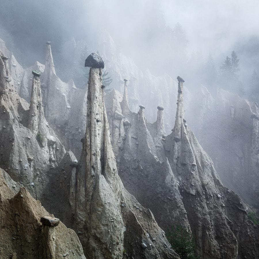 Alien Mushrooms by Martin Rak on 500px.com