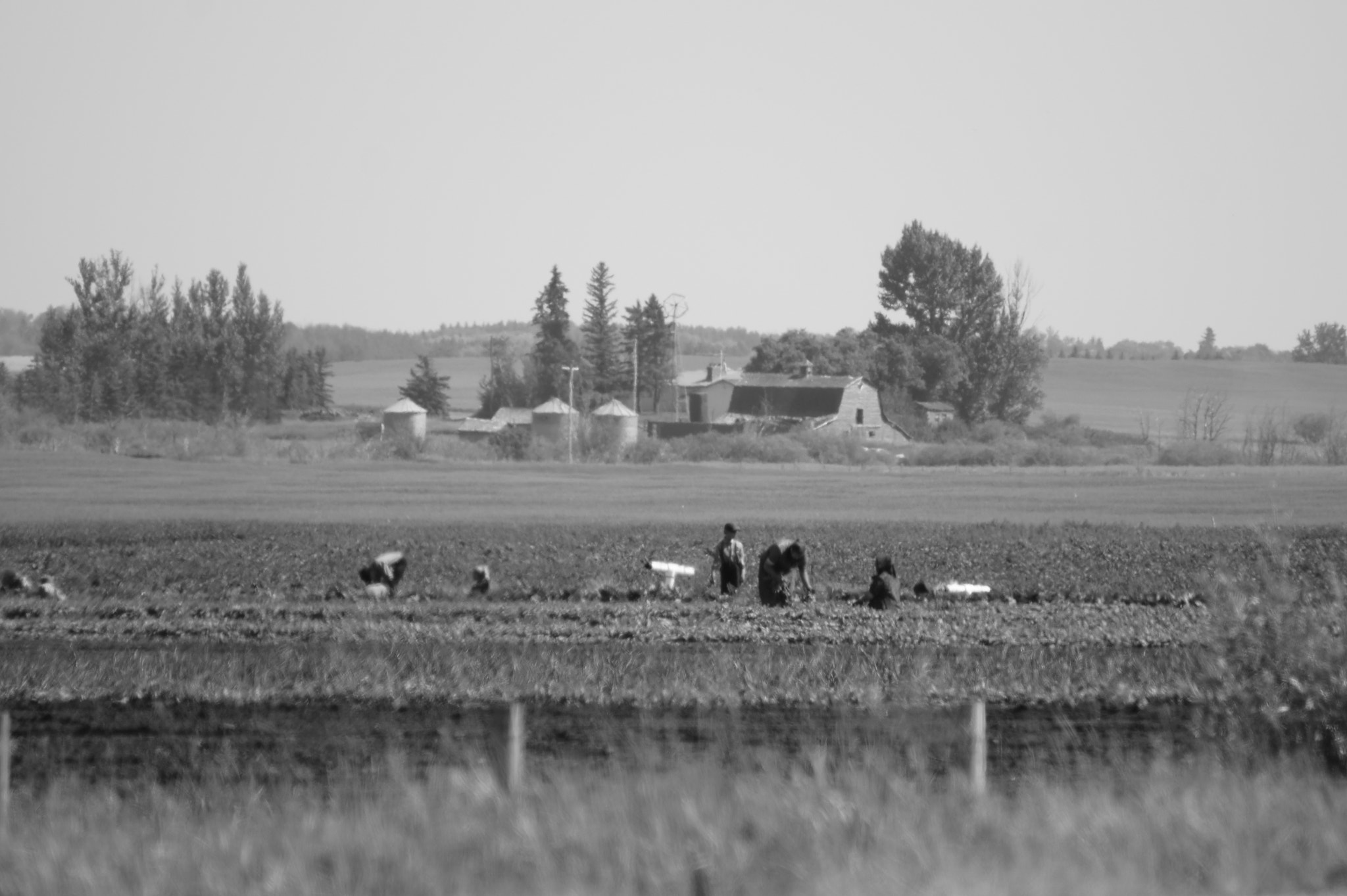 Photograph Hutterite Farm by Katherine Blake on 500px