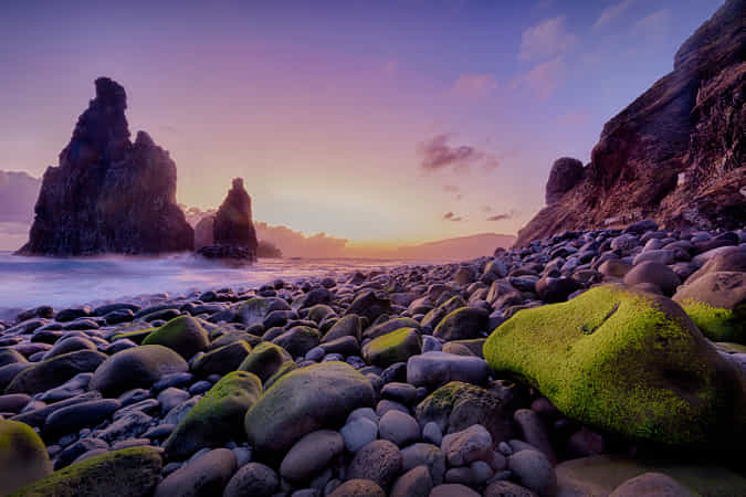 The North of Madeira by Michael Voss