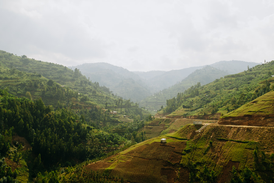 Colorful Rwandan Landscape by Aidan Campbell on 500px.com