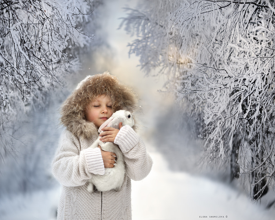 Photograph White.. by Elena Shumilova on 500px