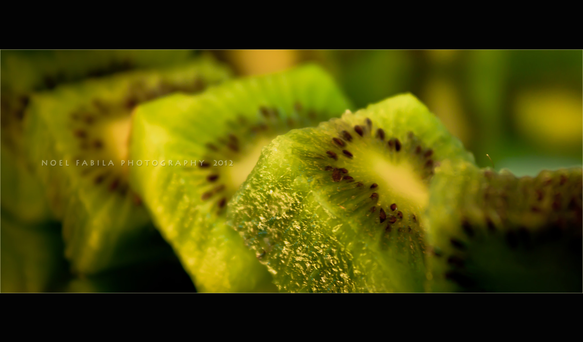 Photograph KIWI by Noel Fabila on 500px