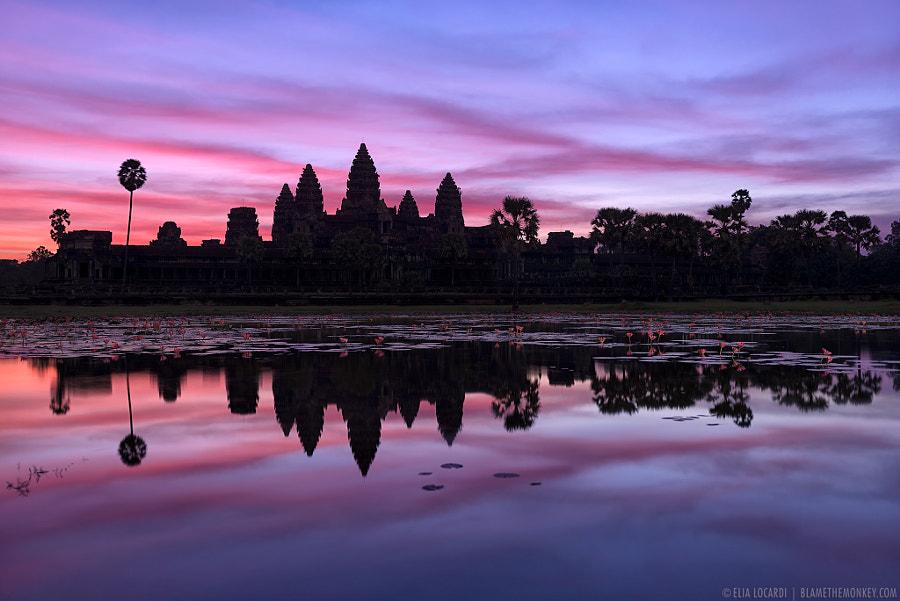 Angkor Twilight by Elia Locardi on 500px