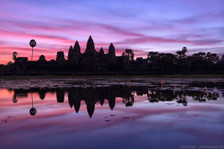 Photograph Angkor Twilight by Elia Locardi on 500px