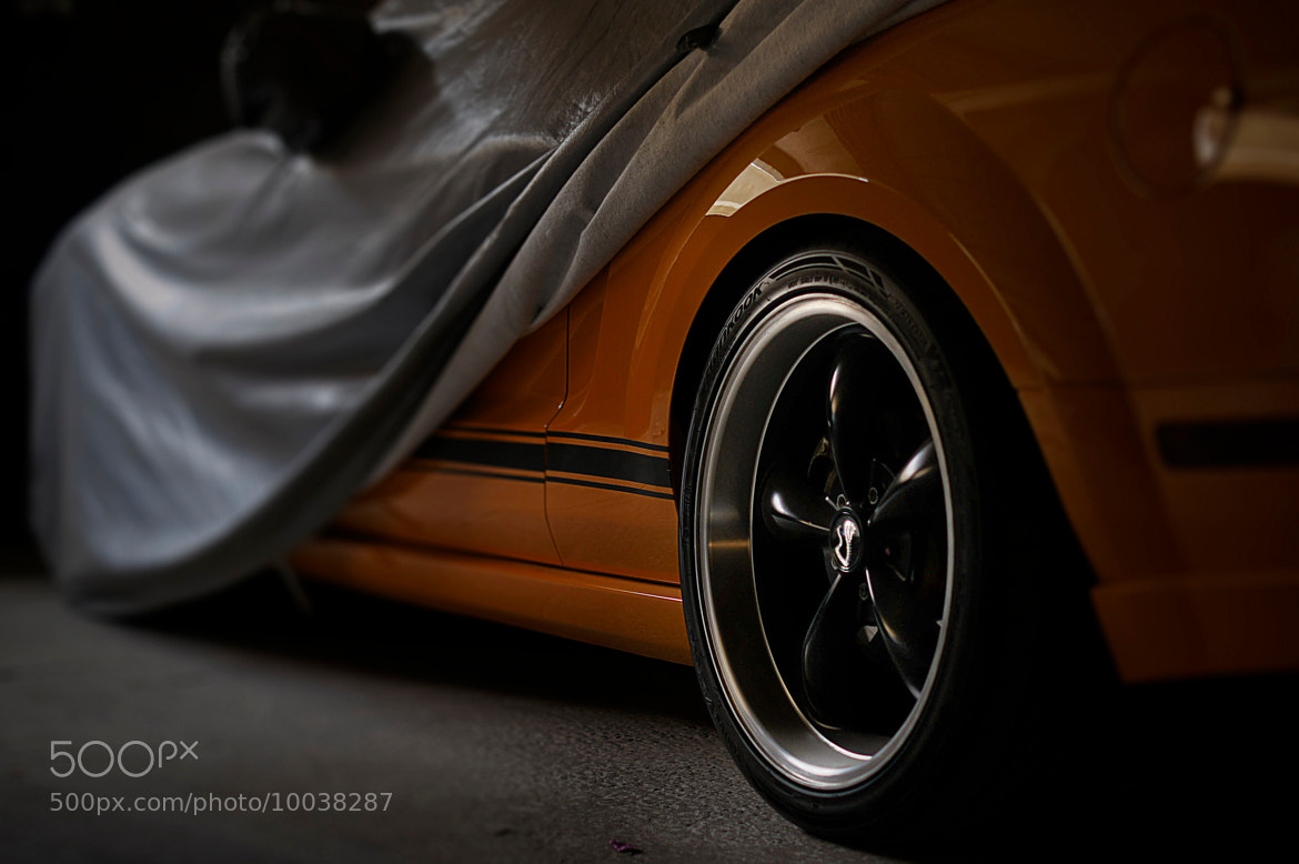 Photograph mustang by jaafar al-dawood on 500px