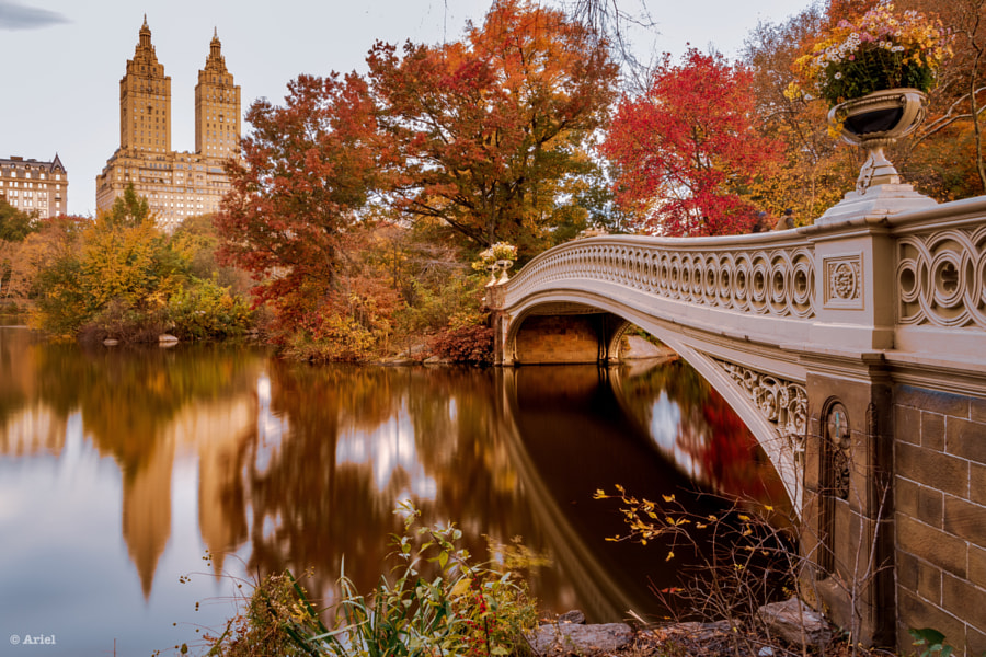 Autumn Fairytale in New York by Ariel  on 500px.com