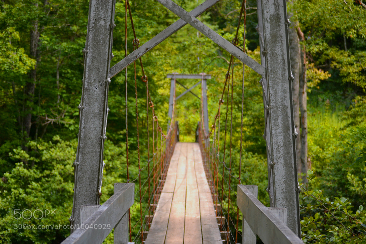 Photograph Footbridge by Kevin Ryan on 500px