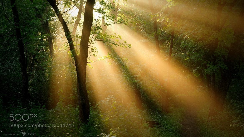 Photograph Однажды утром... by Serj Master on 500px