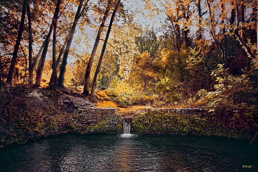 Autumn by Ramón de Gandía on 500px.com