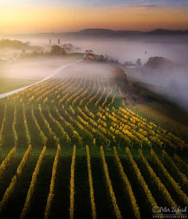 Misty views by Peter Zajfrid