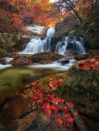Autumn waterfall by Jaewoon U