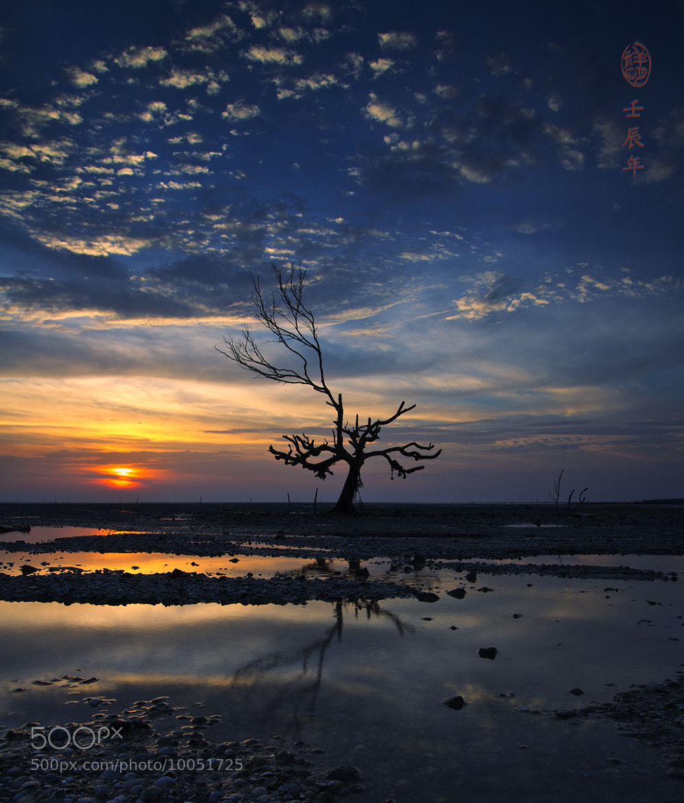 Photograph 生命都昇天了 by SIAH TIONG MENG on 500px