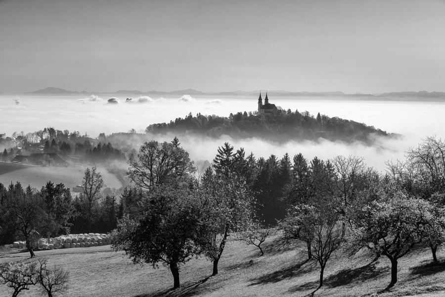 �ber dem Nebel by J�rgen Brochmann on 500px.com