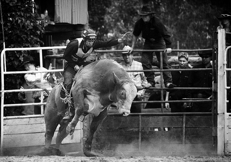 Boddington Rodeo 2006 by Paul Amyes on 500px.com