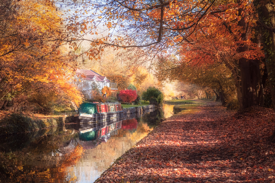 Autumn on the Canal by Brett Gasser on 500px.com