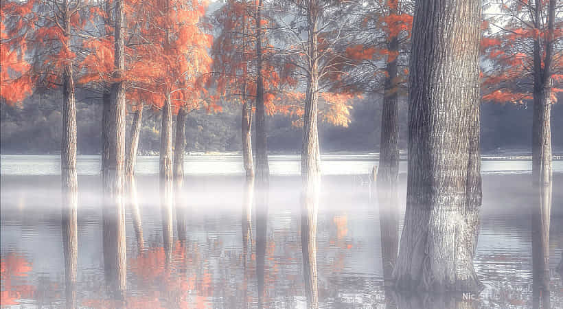 奇墅湖 by NIC INF