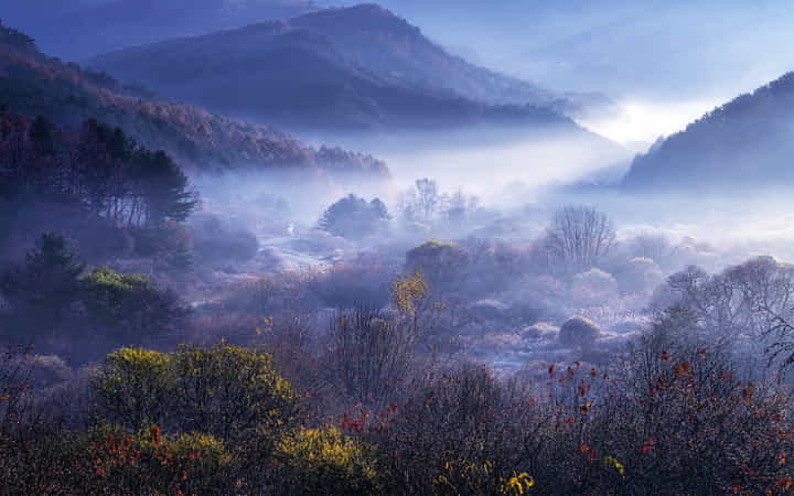 Light in deep valley  by Tiger Seo