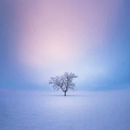 Solitude by Mikko Lagerstedt