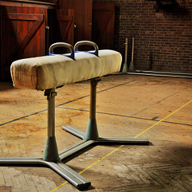 The Pommel Horse by Robert Francis (robertfrancis)) on 500px.com