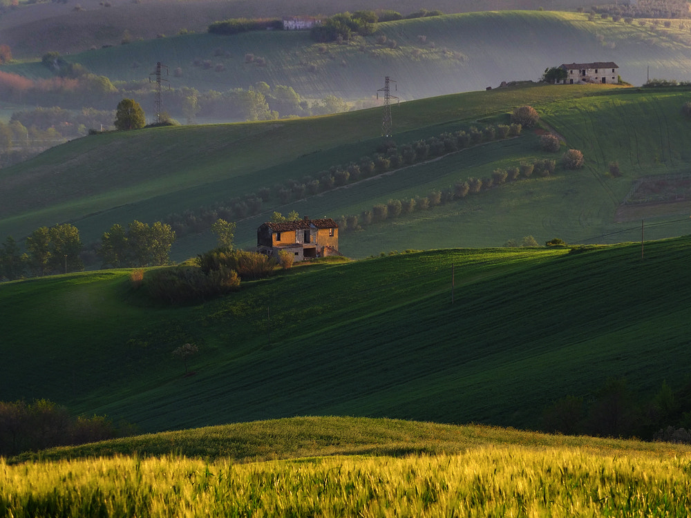 Photograph My hills by ivo pandoli on 500px