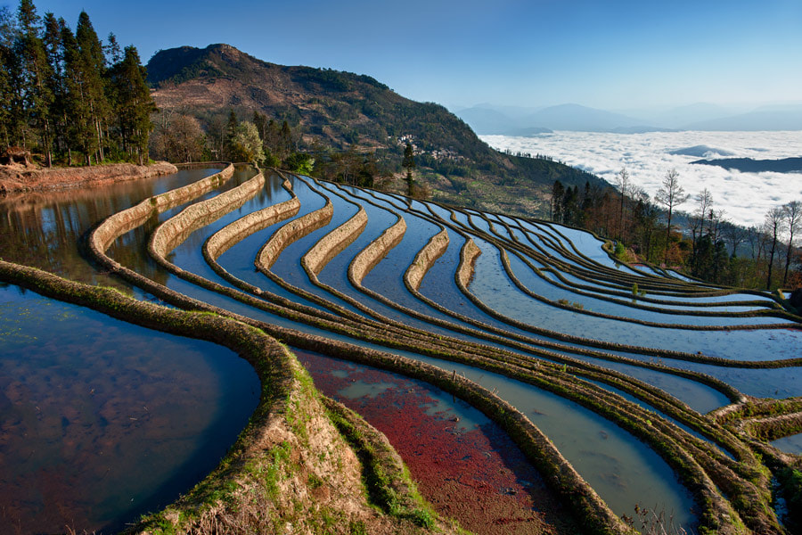 Photograph Rice terraces by George Doupas on 500px