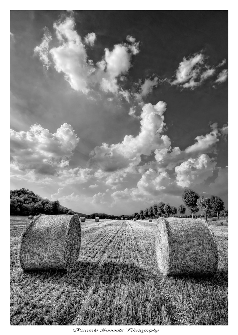 Photograph Countryside B&W by Riccardo Zimmitti on 500px