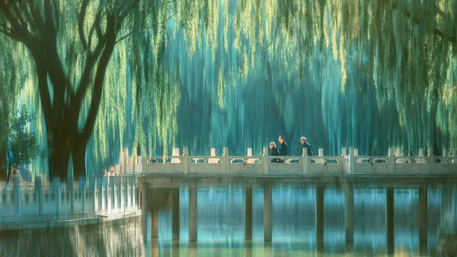 影绘·陪伴父母 by 从众·郝文斌  on 500px.com