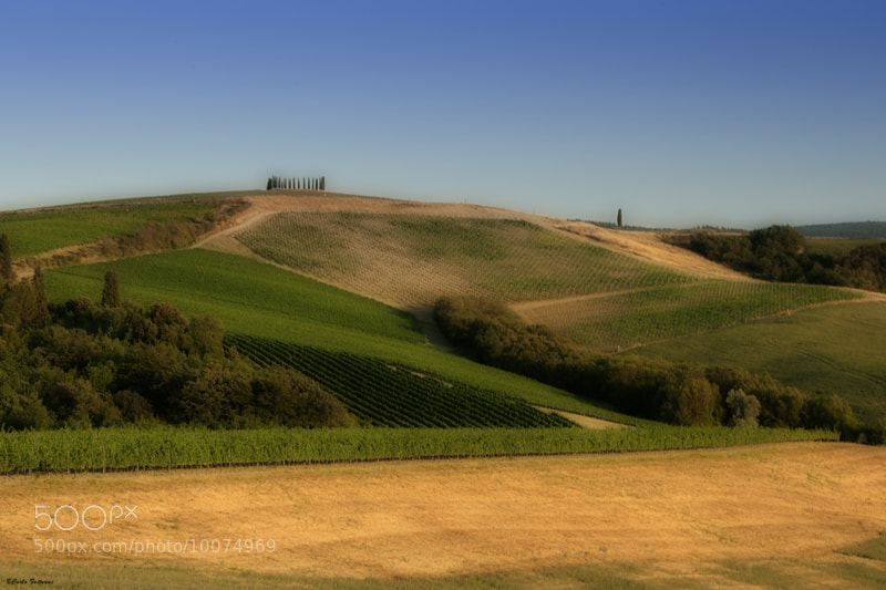 Photograph campagna senese by carlo fattorini on 500px