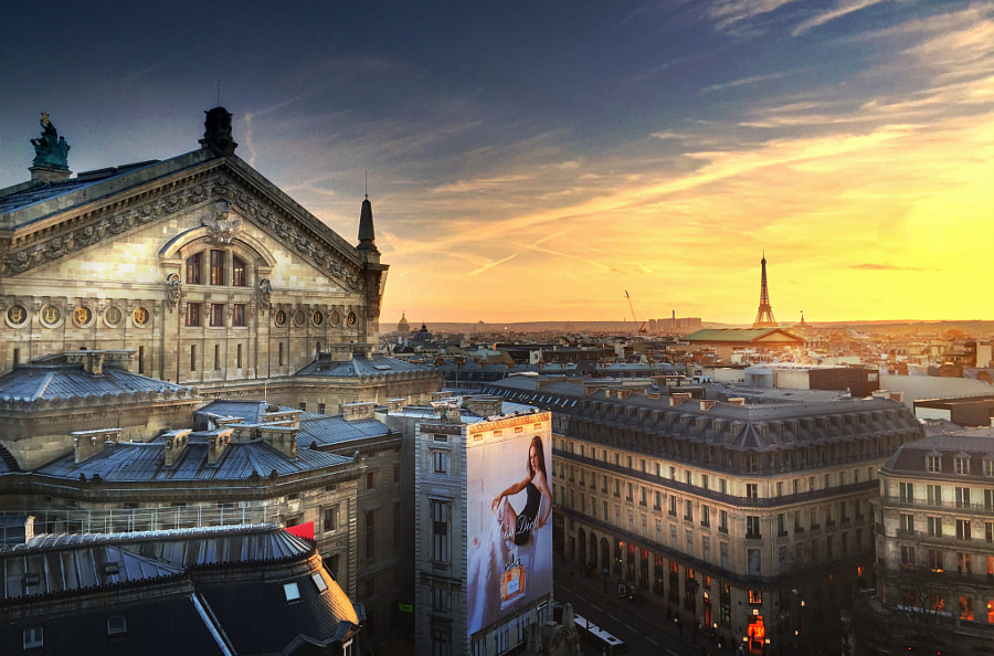 Opera and the Eiffel Tower Iphone 6 Photo