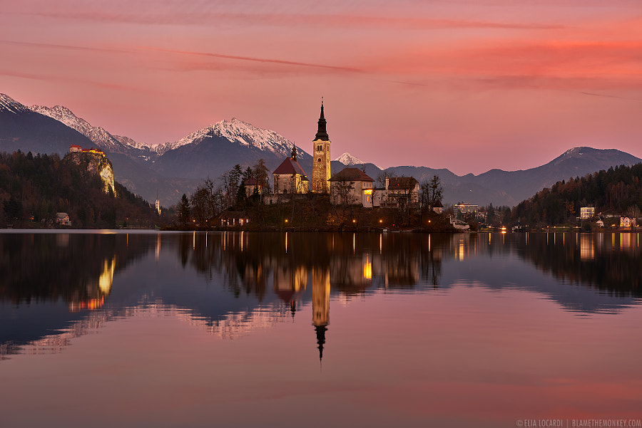 Photograph Reflections of Bled by Elia Locardi on 500px