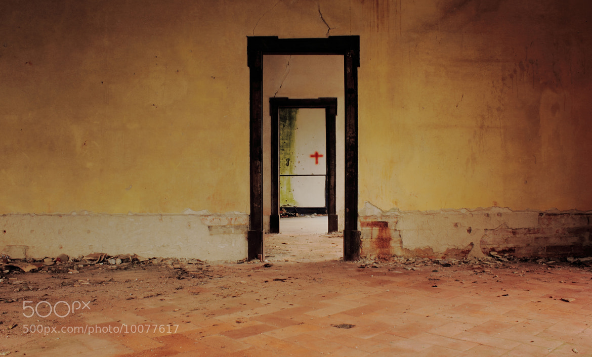 Photograph Doors by Rafael Reis on 500px