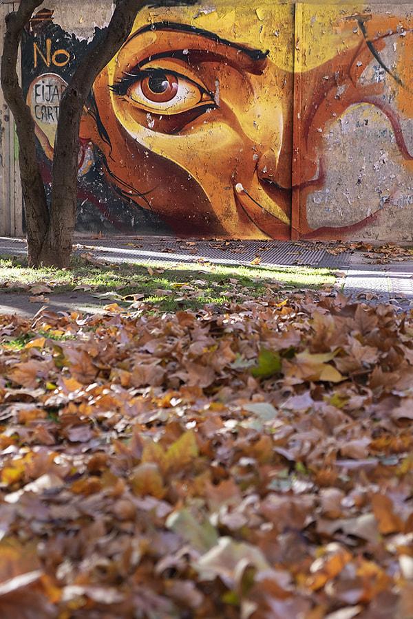 No! don't go autumn by Ana V. on 500px.com
