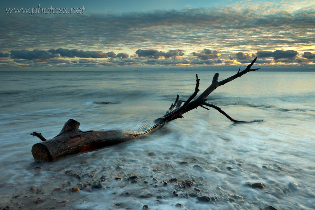 Photograph Logged out by Slawek Staszczuk on 500px