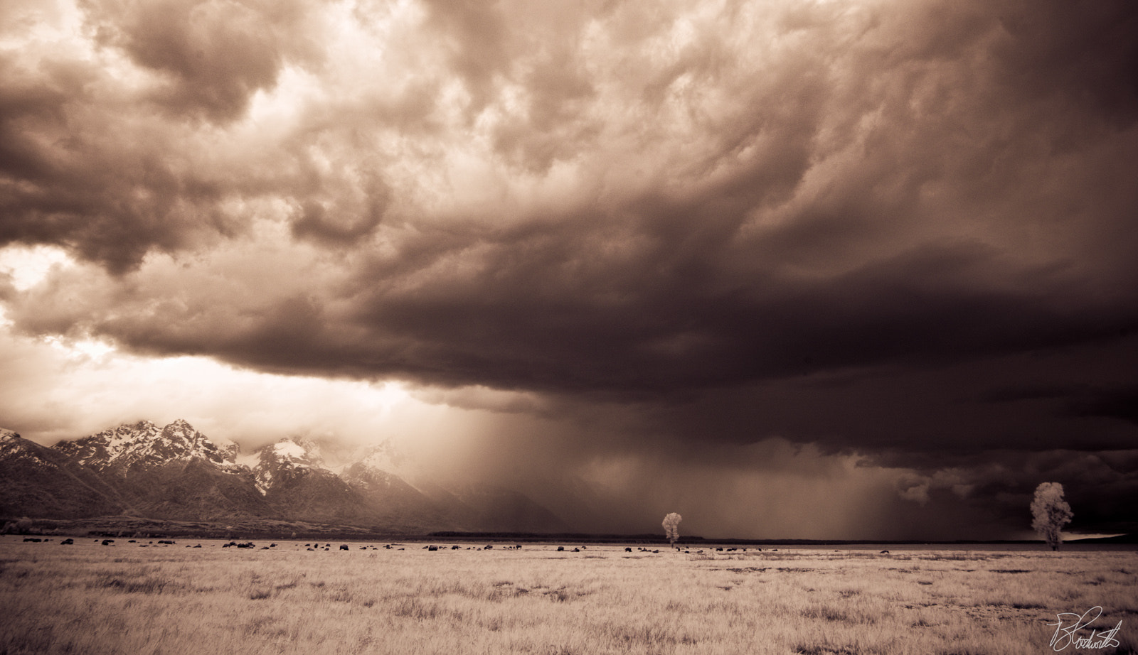 Photograph The Storm by Wil Bloodworth on 500px
