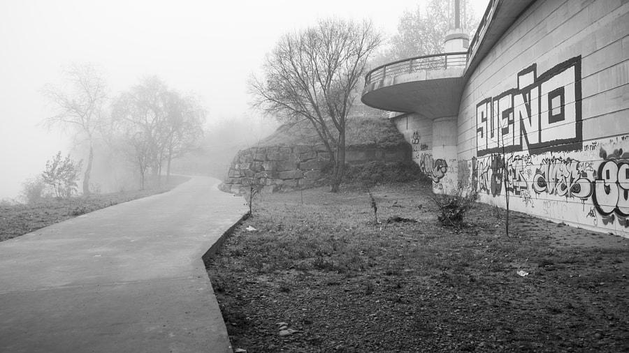 Dream Mist by Ana V. on 500px.com