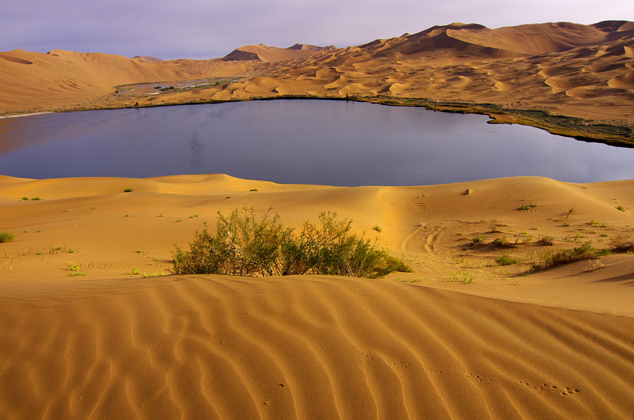 Photograph Beautiful Badain Jaran Desert in morning by RainyZhong on 500px