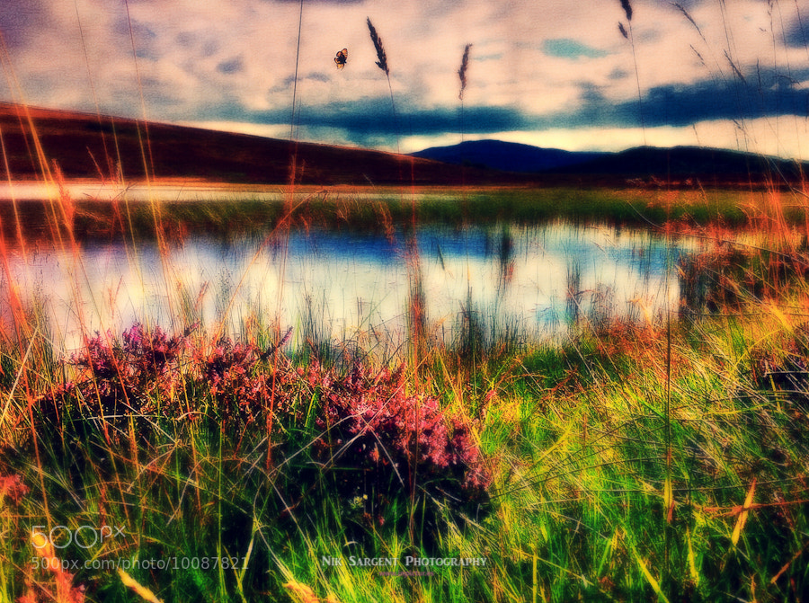 On the banks of Loch Mhor