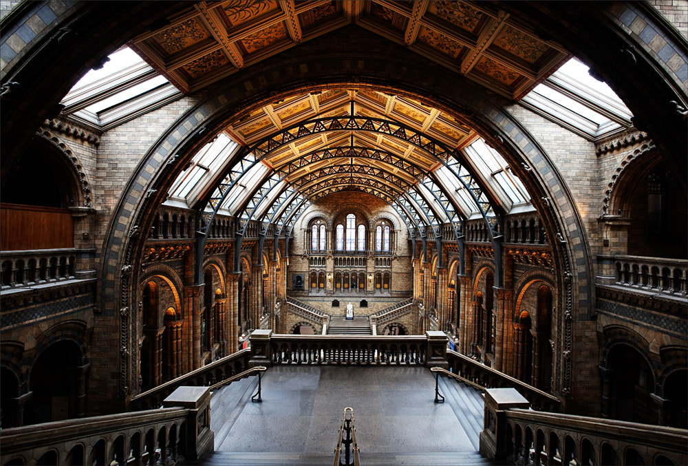 Photograph Natural History Museum by Graeme Webb on 500px