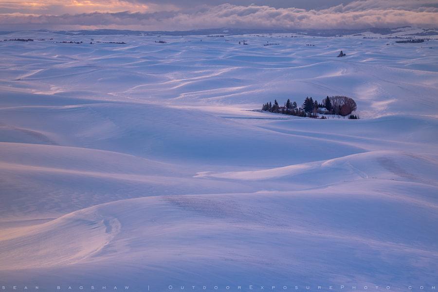 Winter Farm by Sean Bagshaw on 500px.com