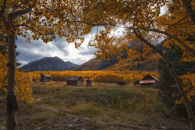 The Golden Veil by Danilo Faria