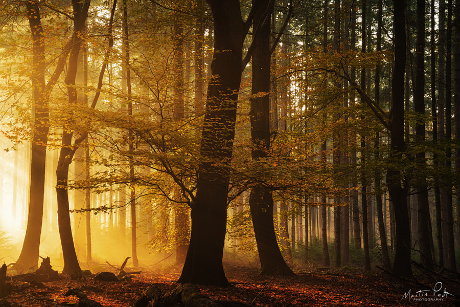 Heating up by Martin Podt on 500px.com