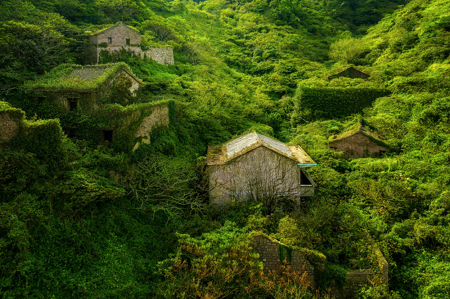 The green Atlantis by Thomas Mueller on 500px.com